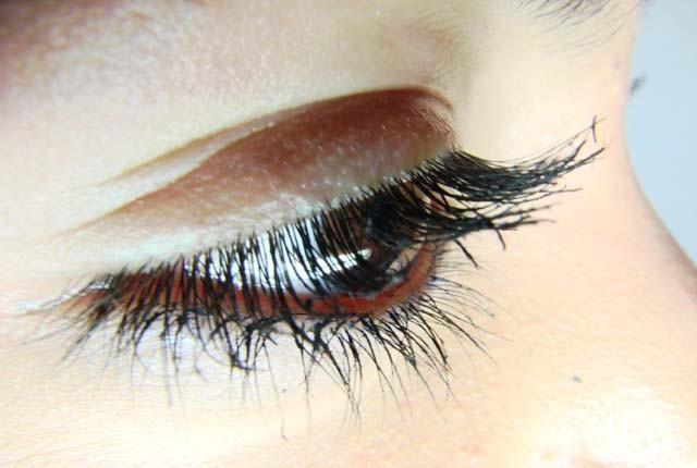 eye-lashes640x430