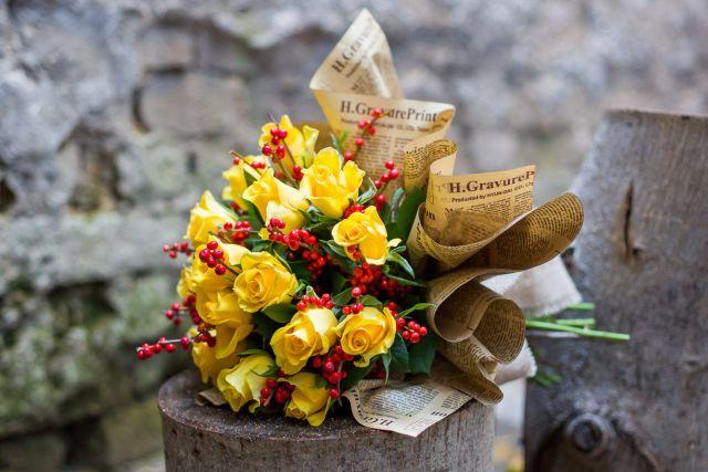 trandafiri,ilex
